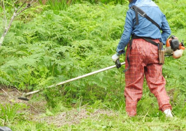 滝沢市で草刈りにかかる料金相場は?追加料金や業者選びのコツまで解説