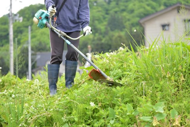 滝沢市で草刈りに最適な年3回の時期~楽に草刈りを終えるコツまで徹底解説